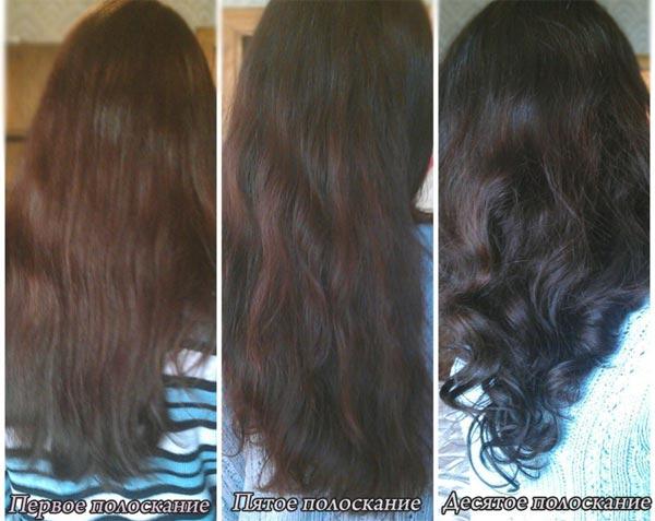 кора дуба окрашивания волос фото отзывы