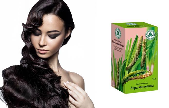 Аира корневища для волос