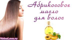 Маски с маслом абрикосовых косточек для волос — лучшие рецепты