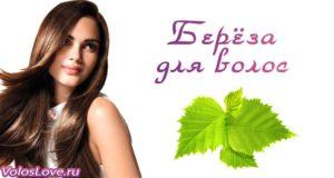 Листья берёзы для волос — отвар, настой, ополаскивание и маски