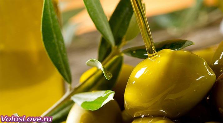Домашняя оливковая маска для волос рецепты с маслом