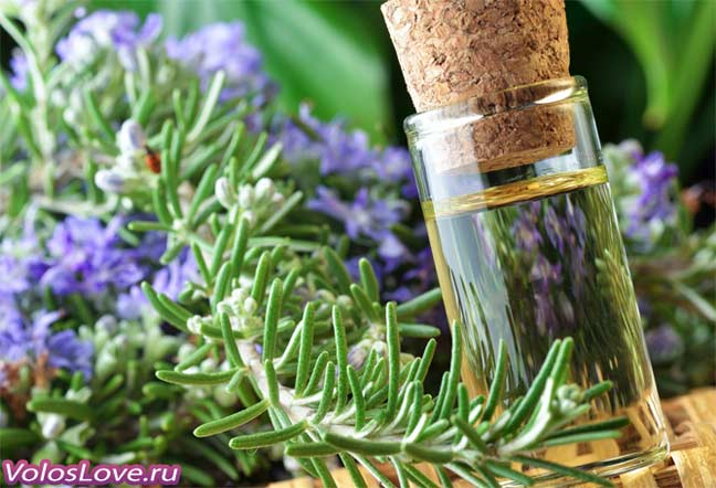 Эфирное масло розмарина для волос рецепты масок отзывы