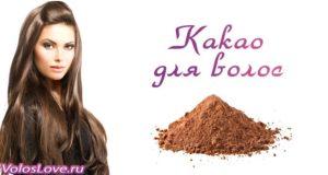 Маски для волос с маслом и порошком какао в домашних условиях