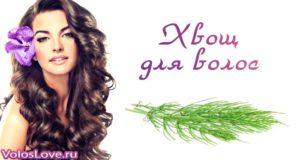 Хвощ полевой для волос — рецепты отвара, масок и ополаскивателя