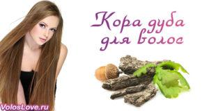 Маски для волос с корой дуба — отвар, ополаскивание и окрашивание
