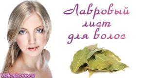 Рецепты с лавровым листом для волос — отвар, настой и маски
