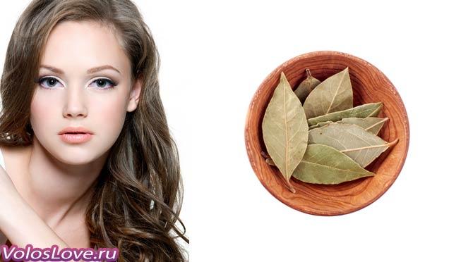 Лавровый лист от выпадения волос маски польза