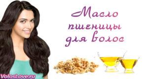 Маски с маслом пшеницы для волос — применение и польза
