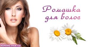 Ромашка для волос — осветление, ополаскивание и лучшие маски