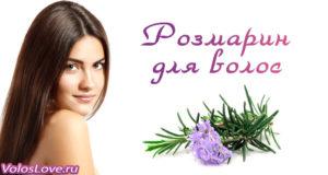 Розмарин для волос — масло, маски и ополаскивание отваром