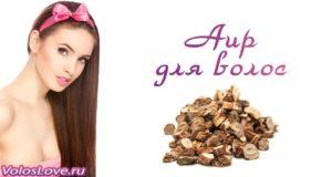 Как использовать корень аира для волос — отвар, масло и маски