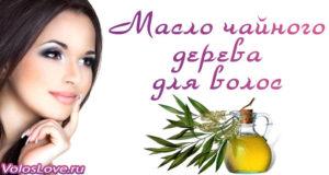 Эфирное масло чайного дерева для волос — применение и рецепты