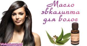 Эвкалиптовое масло для волос — ополаскивание и рецепты масок