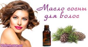 Эфирное масло сосны для волос — польза, применение и отзывы