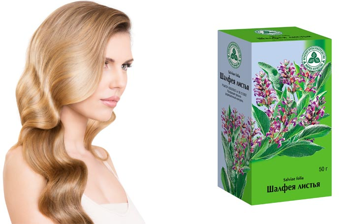 Ополаскивание волос шалфеем листья свойства
