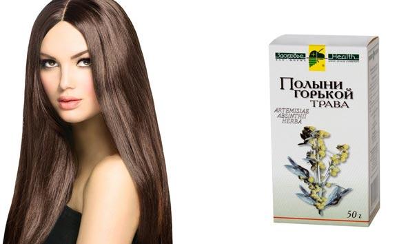 отвар полыни для волос рецепт свойства