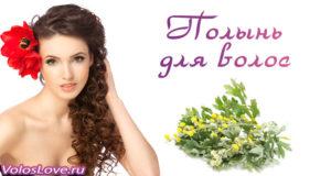 Применение полыни для волос — рецепты отвара, настойки и масок