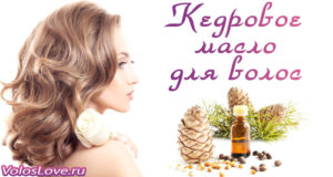 Масло кедра для волос — какая польза и способы применения эфира
