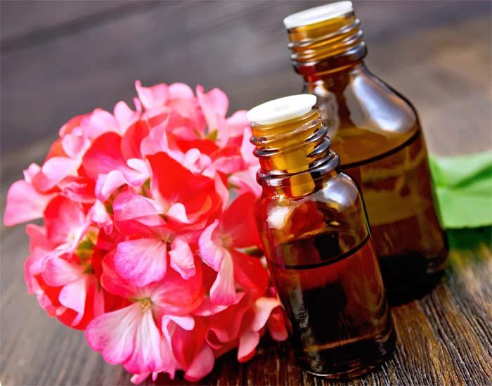 Применение масла герани для волос свойства рецепты
