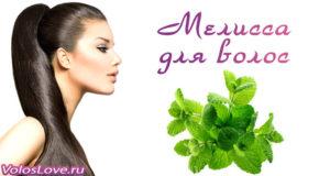 Применение масла и отвара мелиссы для ополаскивания волос