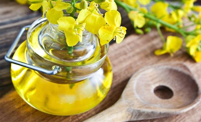 Рапсовое масло польза и вред противопоказания