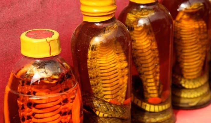 Маски с маслом змеи для волос рецепты полезные свойства