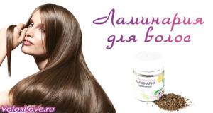 Применение ламинарии для волос в домашних условиях