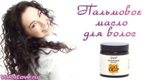 Как применять пальмовое масло для волос — рецепты масок