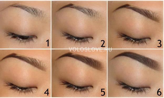 Как правильно покрасить брови - этапы